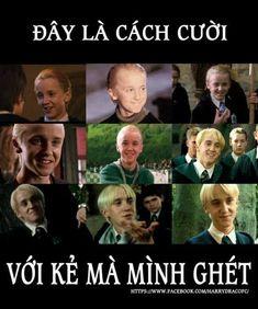 #wattpad #ngu-nhin Nó chung chỉ có tình cảm của Slytherin và Gryffindor có tất cả các cặp nếu thím muốn ngoại truyện Cặp chính :Drarry Cặp phụ:Lucius x Jamer Snape x Lupin Voldemort (Tôm Riddle) x Albus Blaise x Ron  Pansy x Hermione Ginny x Luna Narcissa x lily Cùng các diển viên khác :))   Cũng như mọi ngày không c... Harry Potter Anime, Harry Potter Quotes, Drarry, Draco Malfoy, Cute Gay, Haikyuu, Like Me, Memes, Funny
