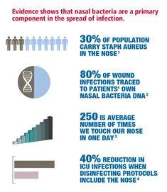 NEW Nozin Infographic