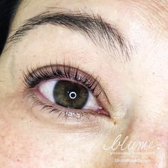 e082522d3e2 43 Best Keratin Lash Infusion by Amy Miller at BlumeBeauty.com ...