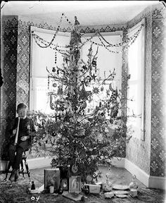 Christmas tree.  1904  vintage  There is so much to be said about the *simple* life when it wasn't all about Black Fridays and stuff .......