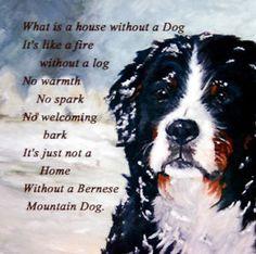 BERNESE MOUNTAIN DOG new hardboard tile Dog Lover Gift No 3 Sandra Coen Artist