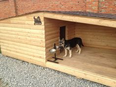 If a dog has to be outside, which I don't agree with, this is the type of accomodation they should have.