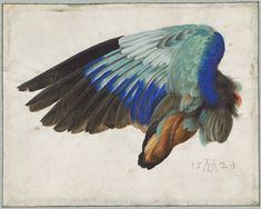 Albrecht Dürer - Paintings   Albrecht Dürer: Master Drawings, Watercolors, and Prints from the ...