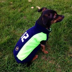 Seahawks 12th Dog jacket, fleece stylish and comfortable