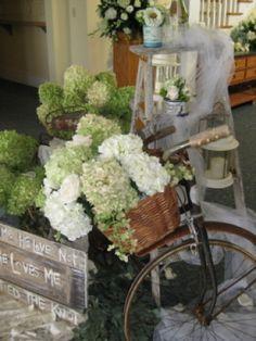 Hydrangea Bicycle