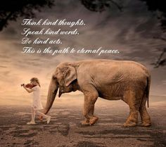 And help stop the slaughter of African elephants