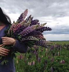 ______ In the morning I tore lupins in the garden, in the afternoon I found myself on a wild lupine field ______ Wild Photography, Portrait Photography, Photography Flowers, Summer Photography, Flowers In Hair, Wild Flowers, Summer Flowers, Instagram Selfies, Flower Aesthetic