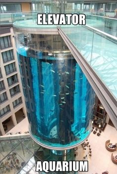 The AquaDom in Berlin, Germany, is a 25 meter tall cylindrical acrylic glass aquarium with built-in transparent elevator