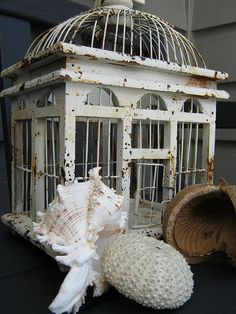 rusty white bircage with shells