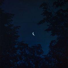 Night (2015) Oil painting by Taras  Paschenko