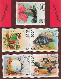5 TIMBRES ANIMAUX COLORES CUBA - Timbres Thématiques/Timbres Animaux - Philatema