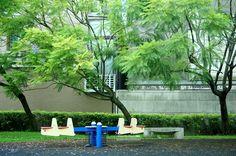 20140816【第一天】 在南投住的地方旁邊有個小公園,種了藍花瑛、三種顏色的繁星花、九重葛等各種顏色的花和樹木,非常熱鬧。 這裡便成為我在中興新村到處拍拍走走的第一站。