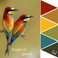 Tropical gems color palette