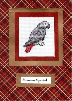Handmade Cross Stitch Parrot Cards - Macaw, Cockatoo, African Grey