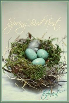 Even though the wind is howling and the rain is pelting against my windows and it is brrrrrr… cold, I am thinking Spring! Here at StoneGable, the birds are not building nests yet, but I am! These homemade nests are a bit messy but easy and fun to make! I'll show …