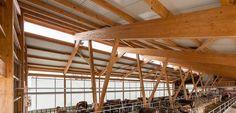 Mock Holzbau AG, Gossau, Holz-Renovation, Holzverkleidung, Schreinerei, Terrassenböden