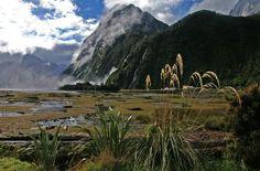 Milford Sound Fiord (Fiordland National Park)