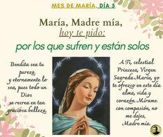 Regina Coeli, Celestial, Cover, Books, God Loves You, Blessed, Sorority, Rosario, Rome
