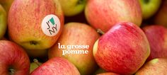 La grosse pomme by DavidsTea