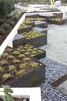 Contemporary Landscape in Texas by Marlin Landscape Systems #ModernLandscaping