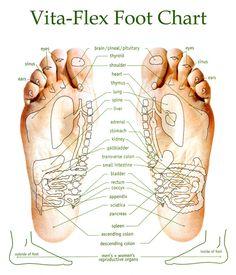 Vita Flex points for applying essential oils on foot