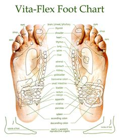Vita Flex points for applying essential oils on foot