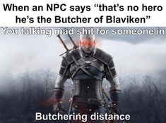 Just one of the reasons why The Witcher 3 is one of the best games ever. Witcher Art, Witcher 3 Wild Hunt, The Witcher Books, The Witcher 3, Wii, Monster Hunter World, Like A Cat, Gaming Memes, Disney Memes