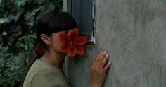 The Milk of Sorrow (Claudia Llosa, 2009)