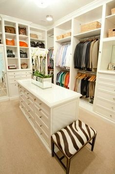 Walk in closet with built in shelves/drawers