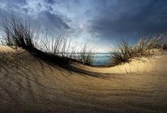 Dunes........ auf Leinwand, Alu-Dibond, Xzpozer und Poster.