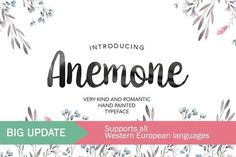 Anemone Script by MediaLab.Co on @creativemarket