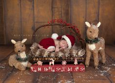 Newborn baby boy wearing santa hat and pants sleeping on the wooden bed in front of wooden backdrop from lemon drop stop Cathy-Murai-Photography- Alhambra-South Pasadena-Pasadena-San Marino-San Gabriel Valley-Los Angeles-Professional Christmas Photographer-Professional Christmas Photography-Christmas newborn photography-Christmas newborn pictures-Christmas newborn photography props-Christmas newborn photography ideas-Newborn Christmas portraits-Newborn baby Christmas photography-Newborn…