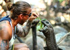 Giant tortouise prison island Tanzania