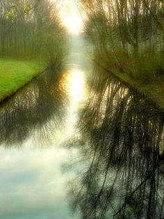 Dream Reflections, The Netherlands