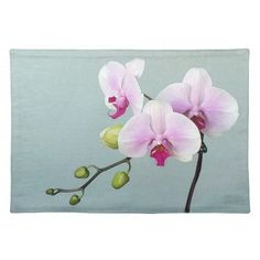 White Pink Orchid on Aqua
