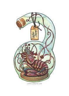 Bottled: Whisker Shrimp by emmalazauski.deviantart.com on @DeviantArt