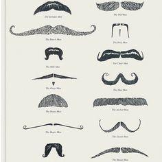 :: Des modèles de moustaches ::