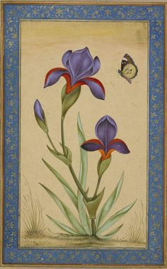 "Gerahmtes Leinwandbild ""Blue Iris With Butterfly"", Kunstdruck East Urban Home Größe: Groß framed art East Urban Home Gerahmtes Leinwandbild ""Blue Iris With Butterfly"", Kunstdruck Framed Art Prints, Painting Prints, Mughal Paintings, Mughal Miniature Paintings, Canvas Art, Canvas Prints, Artist Canvas, Canvas Size, Historia Natural"