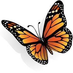 Tres imagenes  en png con fondo transparente . Son de una  mariposa colorida, una frutilla muy real, y una vaquita de san antonio , la que t...