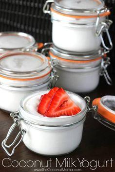 Easy 4 Ingredient Coconut Milk Yogurt Recipe - The Coconut Mama