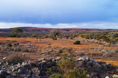 View of the outback from the ruins of Farina, South Australia