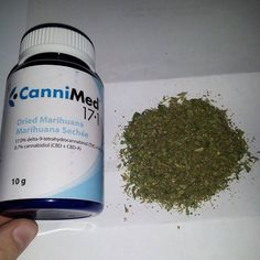 This is actual legal medical marijuana, which the company owner says they must sell for $11 a gram to break even.