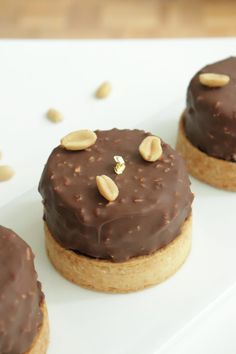 Snickers tarts (chocolate, caramel and peanuts) - Olivia Pâtisse Recipe desserts desserts for baby shower desserts for weddings Mini Desserts, Desserts With Biscuits, Vegan Desserts, Snickers Torte, Snickers Cheesecake, Coconut Biscuits, Coconut Cookies, Snicker Cupcakes, Grilling Gifts