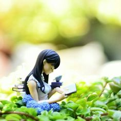 """Toy Photography Book Quotes  """"I think of life as a good book. The further you get into it, the more it begins to make sense"""" –Harold Kushner"""