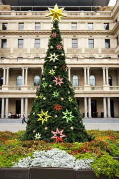 Christmas tree at Circular Quay, Sydney, Australia