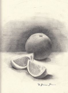 Pencil Drawing Orange and Slices by StyllLifes on Etsy