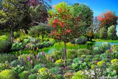 Garden design:1st love Garden Design Software, Puzzle, Small Garden Design, Plants, Puzzles, Riddles, Small Yard Design, Planters, Jigsaw Puzzles