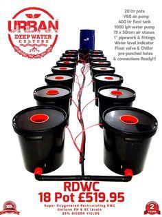 Urban deep water culture RECIRCULATING DWC oxygenated solution