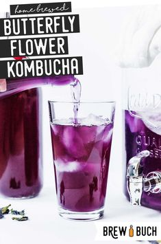 For a fresh (and caffeine-free) tea to try on your homemade kombucha, you have to try this Butterfly Pea Flower Kombucha recipe! Floral, fun, and so colorful! #homebrewed #fermentation #kombucha #butterflypea