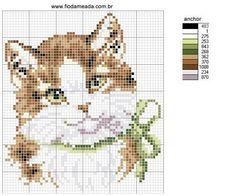Animaux chat avec un arc